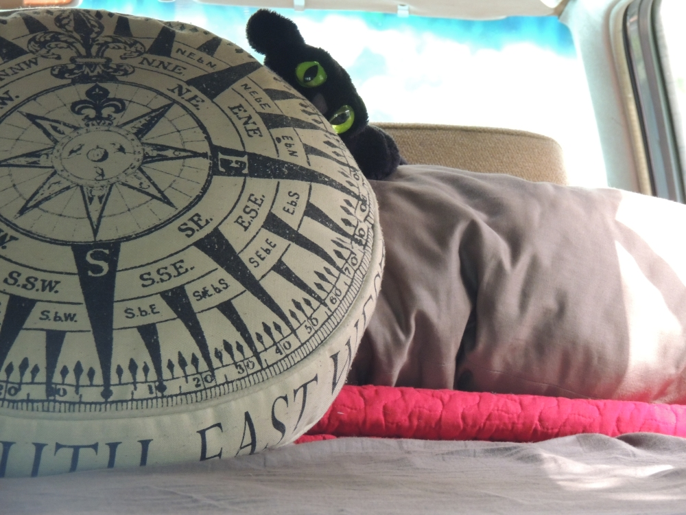 Our mascot getting cozy before heading into Belize