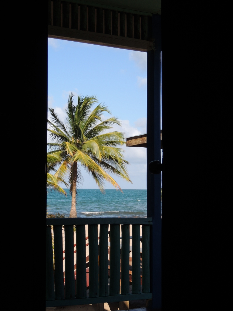 View from bed at Lebeha. Hopkins, Belize
